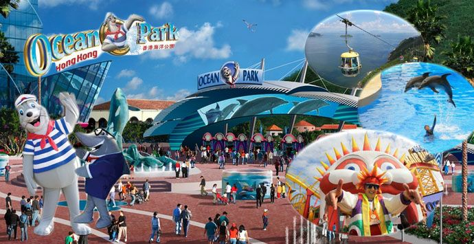 disney hong kong case study Hong kong disneyland (a): the walt disney perspective case solution, mid-1999 were known with intense discussions about the possibility of building a theme park like disneyland hong kong on.