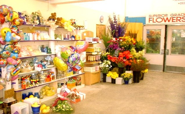Florist Shop Photos - Auckland Flowers and Gifts