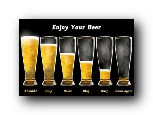 116 best beer images on pinterest brewery home brewing and beer signs enjoy your beer poster funny beer chart 33601 publicscrutiny Image collections