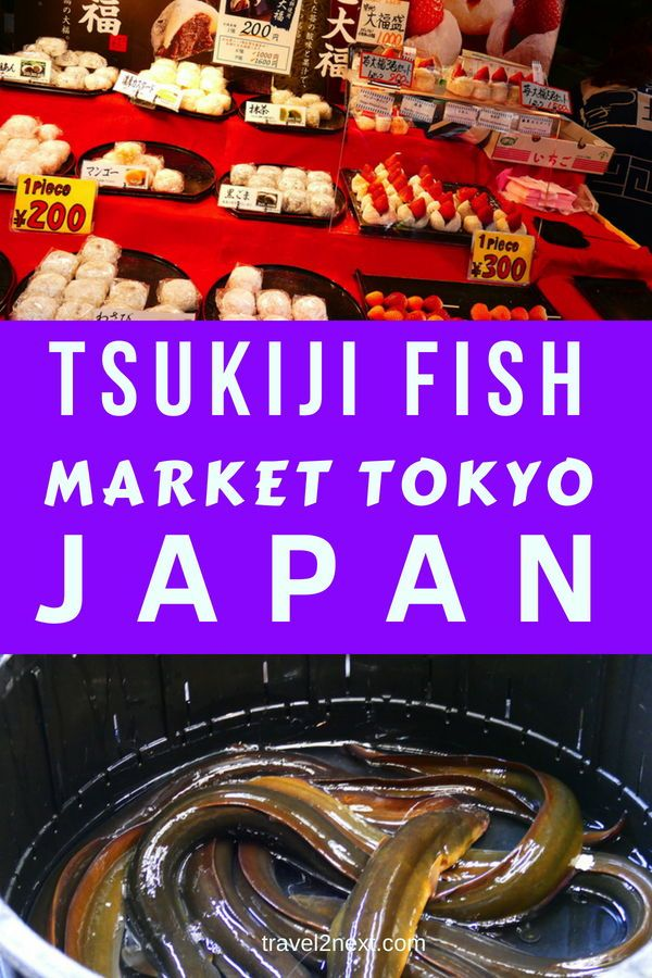 Fyi How Do The Japanese Celebrate Newyear S Eve In Tokyo Sushi Tokyo Lebanon 78838839 Dine In Japanese Restaurant Around The Worlds World Newyear