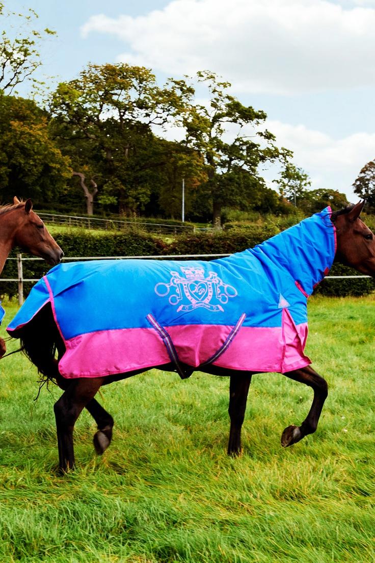 Horse rug - combo full neck - blue
