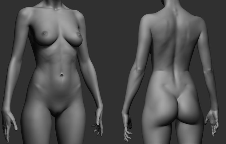 realistic zbrush-ed female torso http://www.zbrushcentral.com/showthread.php?174787-Vir-Norin-Sketchbook/page17&p=1121310&infinite=1#post1121310