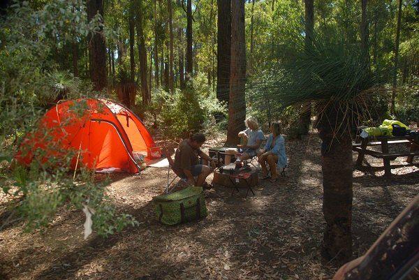 Camping at Lane Poole Reserve #camping #dwellingup
