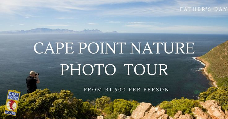 Cape Point Nature Photo Tour: Take a photo tour with your Dad and his camera to get the best shots from the best spots. Experience the Cape Point Route from behind the lens. Anyone with any camera will find something interesting to photograph AND learn to do it better. Your personal photo coach will help you capture a Day with Dad with land & seascapes, wildlife, and spectacular scenery.  A great Father's Day Experience.