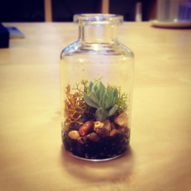 Micro-garden!