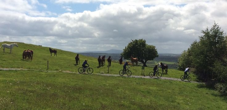 Hen party with horses & beautiful views while enjoying their outdoor biking activity