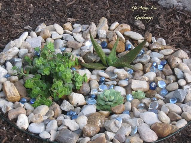 mini rock gardens to highlight small plants that often get lost in a large border