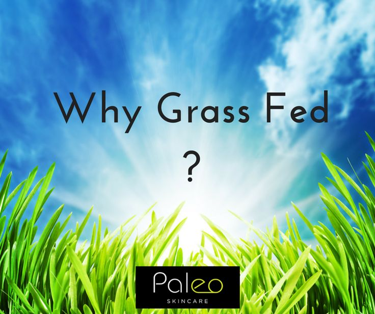 Sexy Skin is all in the Fat http://www.paleoskincare.com.au/blog/why-grass-fed-beef-tallow/?utm_campaign=coschedule&utm_source=pinterest&utm_medium=Paleo%20Skincare&utm_content=Sexy%20Skin%20is%20all%20in%20the%20Fat Grass fed beef also contains higher levels of skin-benefiting antioxidants, vitamins, and minerals.