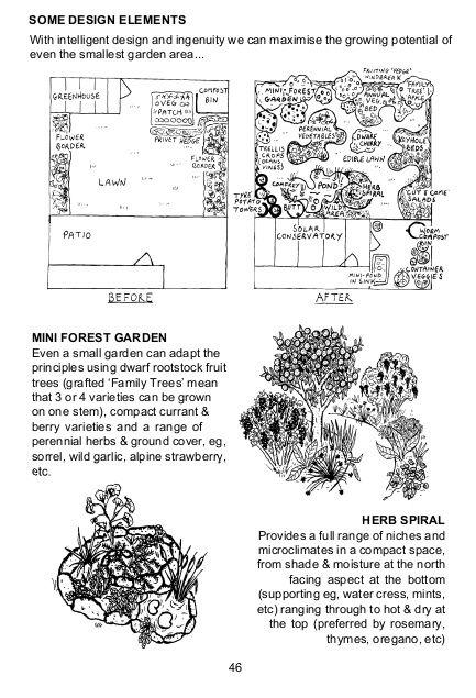 lawn w/ garden vs. food forest