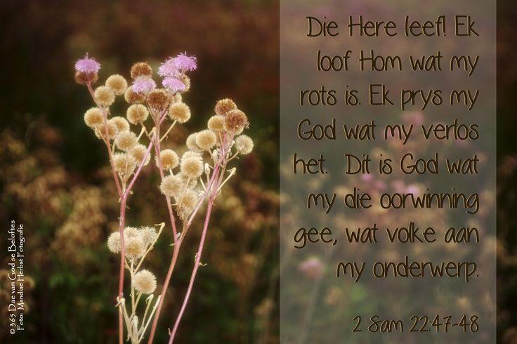 Dag 148 Bybelvers 2 Sam 22:47-48 Die Here leef! Ek loof Hom wat my rots is. Ek prys my God wat my verlos het. Dit is God wat my die oorwinning gee, wat volke aan my onderwerp.