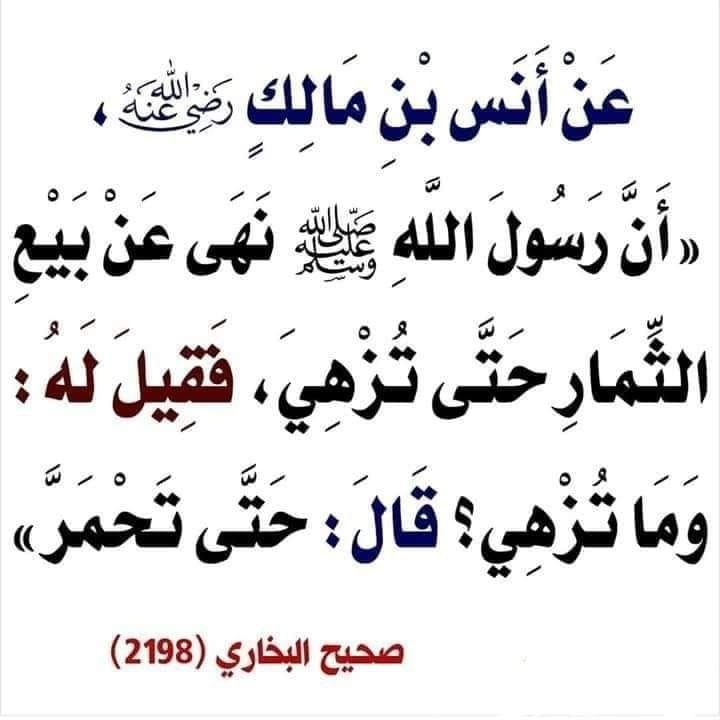 Pin By Youssef Benkhayi On قطوف دعويه Islamic Phrases Hadith Quotes Islamic Quotes
