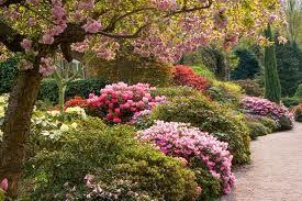 Σπιτικά Μυστικά: Μυστικά για τον κήπο και τα φυτά σας