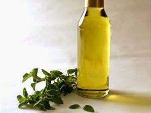 Receita de óleo de orégano, que, segundo pesquisas, combate câncer, bactéria, vírus, fungos e vermes