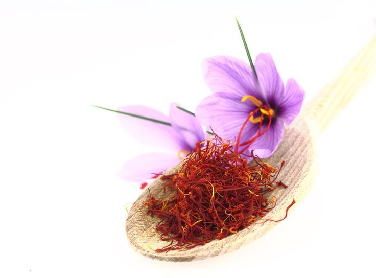 SAFFRON DECREASES HEAT SHOCK PROTEINS & METABOLIC SYNDROME. Saffron is again showing its healing abilities. Recent research finds it reduces heat shock protein antibodies and metabolic syndrome symptoms, along with stimulating immunity and cognition.