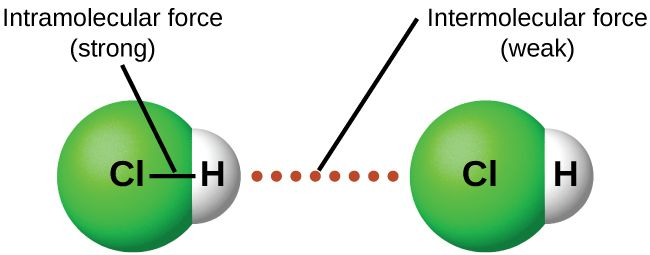 Image result for intermolecular forces