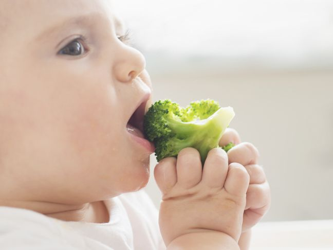 4 Healthy Mess Free Snacks For Babies