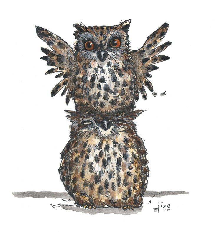 Owls, illustration, drawing / Gufi, illustrazione, disegno - Art by Eva Poppink