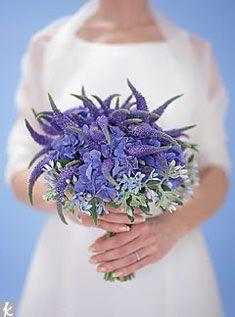 1000 Images About Beautiful Blue On Pinterest Cobalt Blue Delphiniums And Floral Arrangements