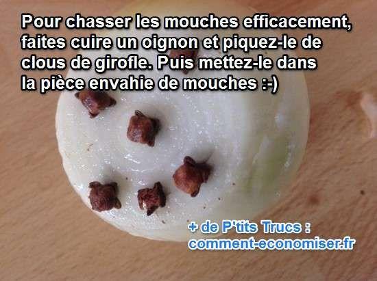 Il existe un remède de grand-mère super efficace pour chasser les mouches de la maison. L'astuce naturelle est d'utiliser un oignon cuit et des clous de girofle.   Découvrez l'astuce ici : http://www.comment-economiser.fr/le-meilleure-remede-contre-mouches-a-connaitre.html?utm_content=buffer421b1&utm_medium=social&utm_source=pinterest.com&utm_campaign=buffer