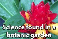 Science found in a botanic garden