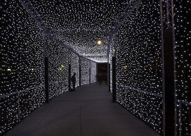 Light Tunnel: In Geneva to celebrate the winter time