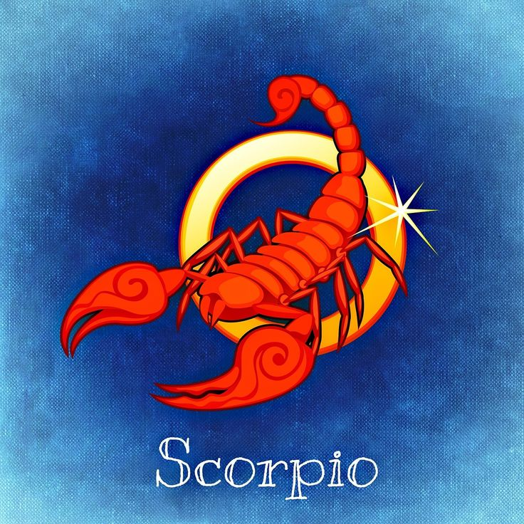 Scorpio Love Profile - Deep and Pure Passion.  When a Scorpio is in love, there is no such thing as doing stuff half-way. For a Scorpio it is all or nothing. Scorpios love with a deep and pure passion and once they think they have found their soul-mate, there is no going back to another person. Once they have set their mind on something, it stays there.