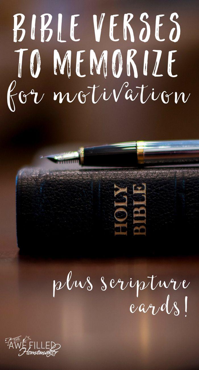 Bible Study Textbook Series - ABARC