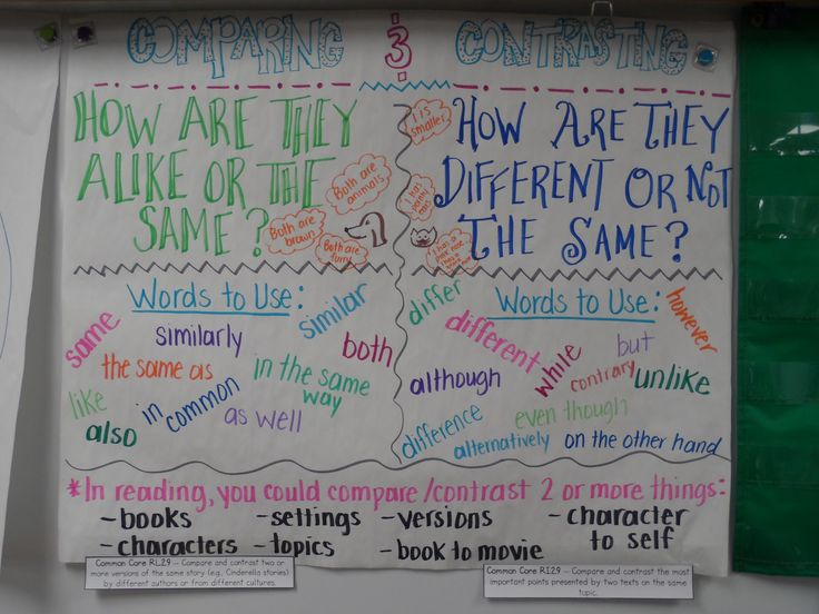 contrast primary school essay Today some of ministry education in industrial countries attempt to teach another language to children during the school some masters are convinced that it is better to student start to learning a second language in early age at primary school contrast begin learning a foreign language in secondary school.