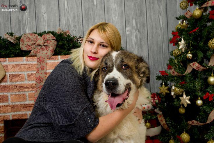 Fotograf Animale de Companie (Pets Photographer) Contact: +40 0745 284 025