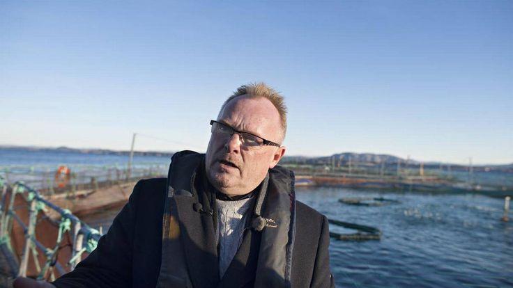 Fiskeriminister Per Sandberg (Frp) avkrever forskerne på Havforskningsinstituttet å være positivt innstilt til oppdrettsnæringen. Havforskningsdirektøren nekter å uttale seg om saken.