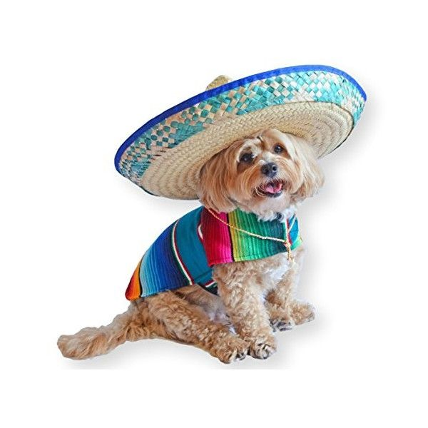 Japan Proxy and Shopping Mall - The Premier Site to Buy from Japan!  Mexican Dog