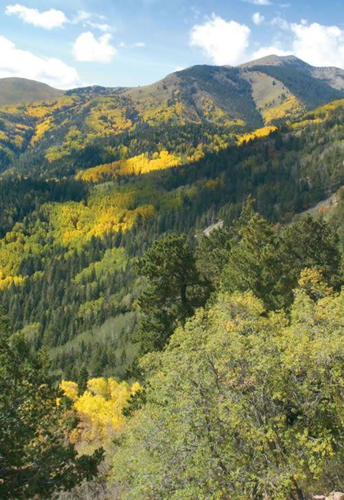 Best 25 Ruidoso New Mexico Ideas On Pinterest Carlsbad