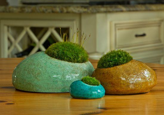mossy moss moss: Ideas, Thanksmossi Moss, Mossy Moss, Moss Moss, Air Plants, Art Mossy, Gardens Moss, Moss Gardens, Moss Rocks