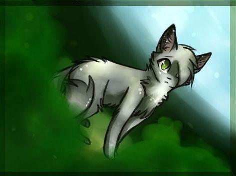 Dovewing | Warrior Cats