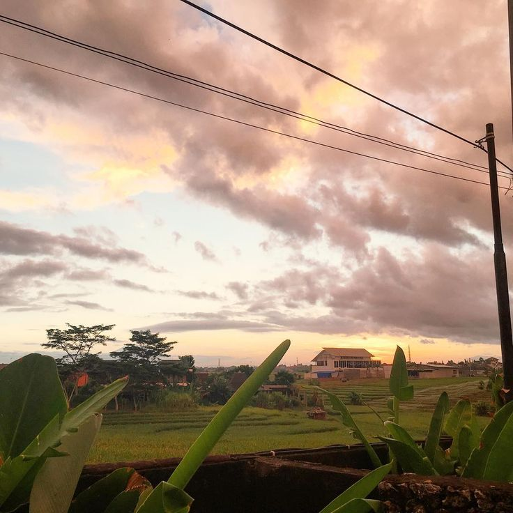 Dawn in Canggu! I took this photo from my outdoor bathroom while standing on a chair to look over the wall. The things we do!! . .