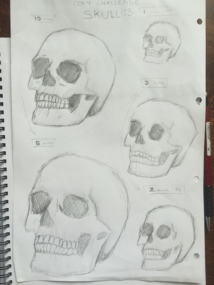 By GoldFinch :3    Copying on time challenge, skull, pencil, drawing, practise, sketch