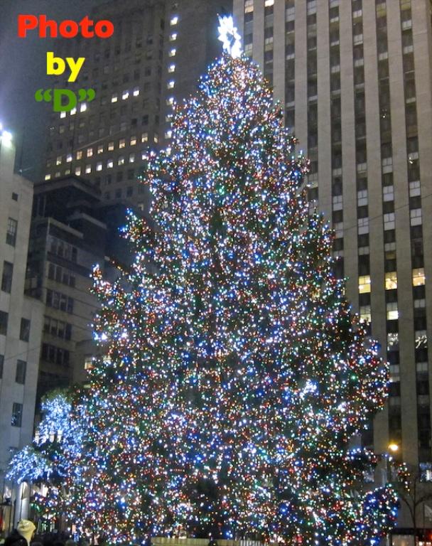Rockefeller Center Christmas Tree Cam