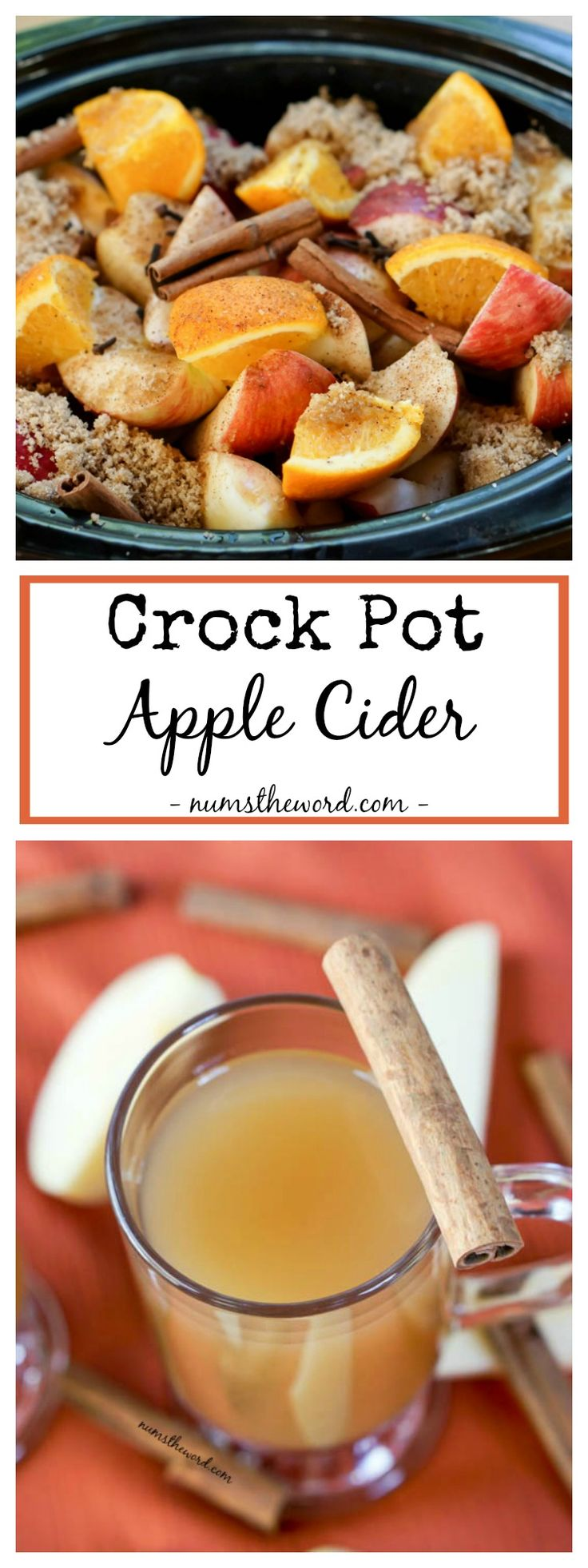 Crock Pot Apple Cider not only makes your home smell like Autumn, it tastes amazing too! Fresh Homemade Apple Cider is the best on a chilly day or night!
