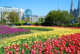 Ottawa Canada tulip festival