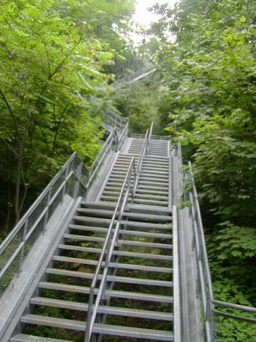 Chedoke Stairs up, up, up the Escarpment, Hamilton, Ontario