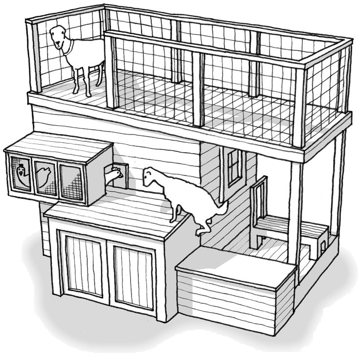#shed #backyardshed #shedplans Tiered Goat Shed- seriously awesome, no chickens though lol