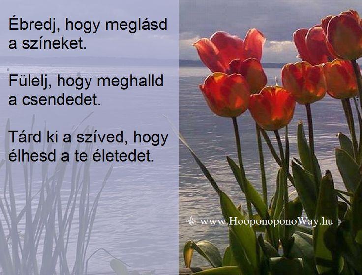 Hálát adok a mai napért.  Ébredj, hogy meglásd a színeket. Fülelj, hogy meghalld a csendedet. Tárd ki a szíved, hogy élhesd a te életedet. Így szeretlek, Élet!  ⚜ Ho'oponoponoWay Magyarország ⚜ www.HooponoponoWay.hu