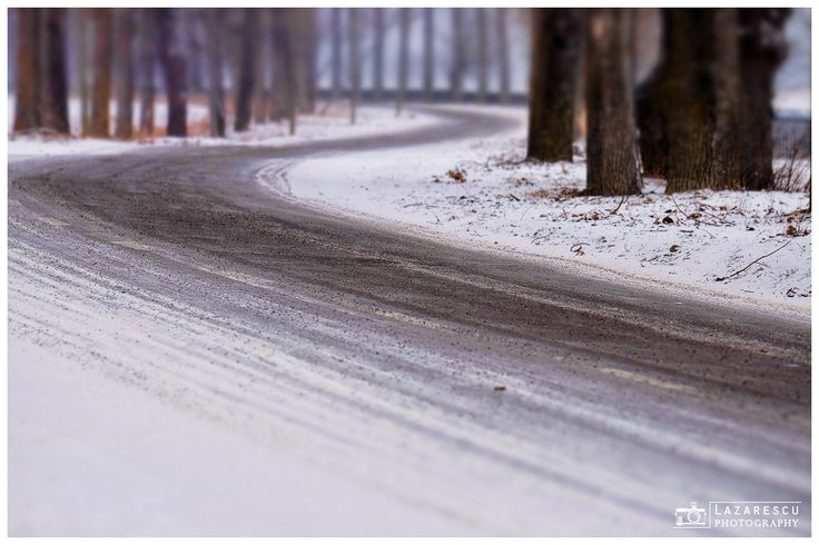 My 2016 way :) - Road through the forest in winter season ... Brrrr so cold was here!