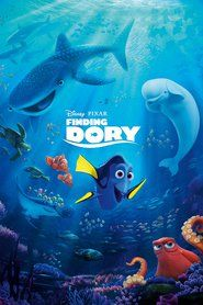 Finding Dory 2016 ----------- TMDB RATE: ******  ----------- Hold on, my fellow film fanatics, critics and viewers. I've heard allof the bad reviews of this film. I am not oblivious to the fact this isa big budget Hollywood animation sequel, and I know that when some ofyou hear the word sequel, big budget, or ...