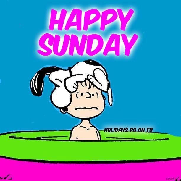 Happy Sunday Snoopy good morning sunday sunday quotes good morning quotes happy sunday sunday quote happy sunday quotes good morning…