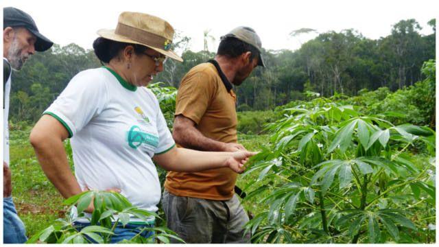 Proprietários de imóveis rurais têm até dezembro para fazer o Cadastro Ambiental Rural As pessoas que tem imóveis localizados em uma área rura