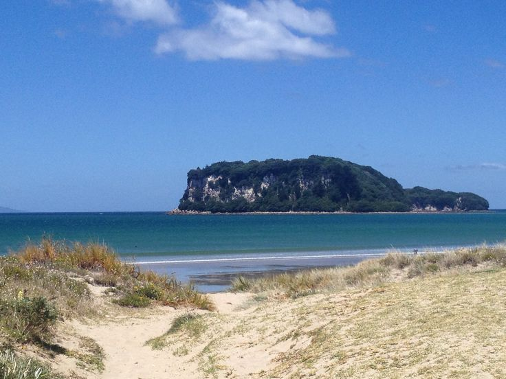 North Island beach, New Zealand.  I love!