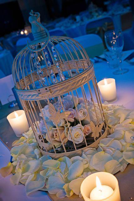 Simplicity of candles, petals and birdcages http://www.tailracecentre.com.au/2013/12/01/love-patient-2/