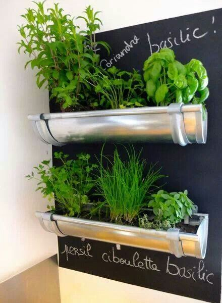 Repurposed gutters to grow kitchen herbs.