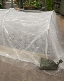 Give plants extra protection in cold weather with this inexpensive quick garden hoop.